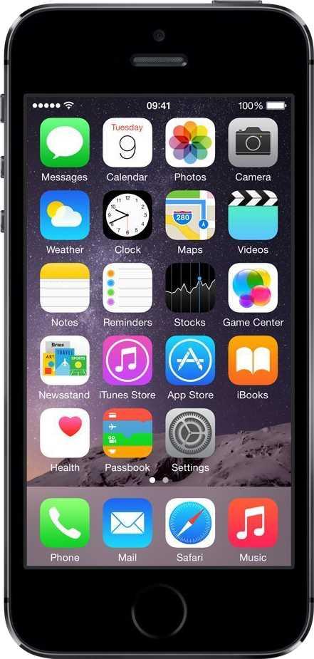 Apple iPhone 5S Gris Espacial